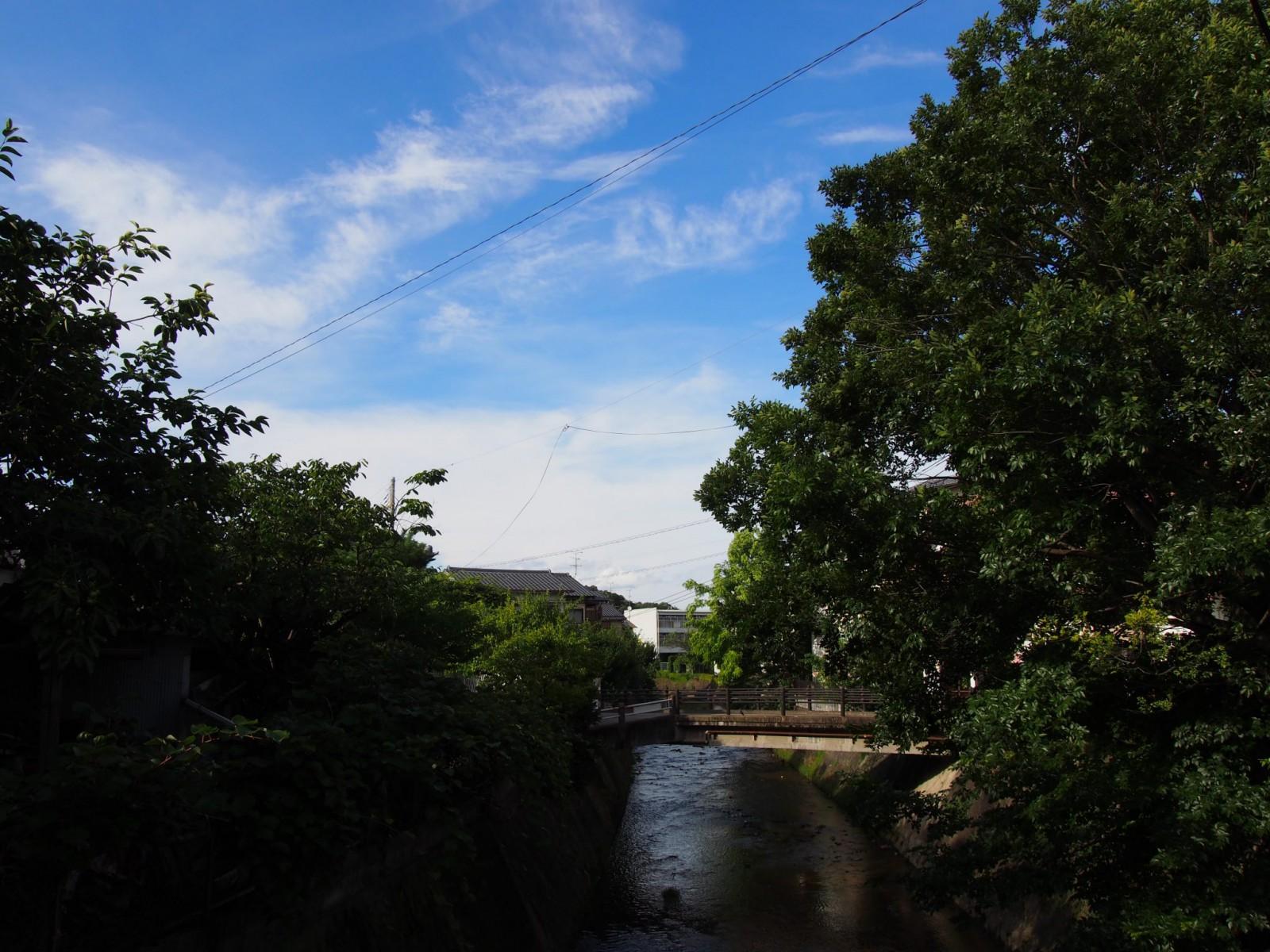 法蓮町を流れる佐保川(長慶橋付近)