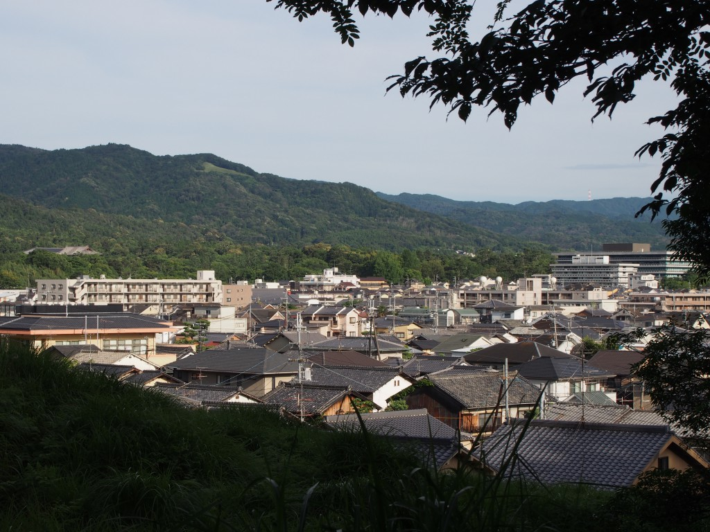高円山を望む(西安の森)