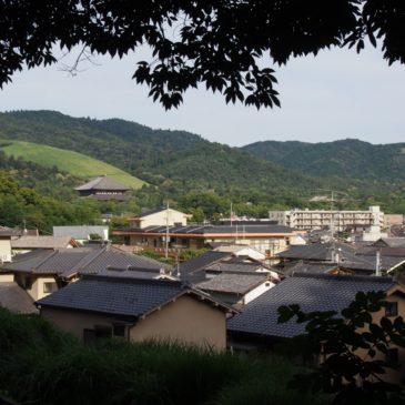 【西安の森】若草山の山焼きが良く見える眺めの良い穴場スポット