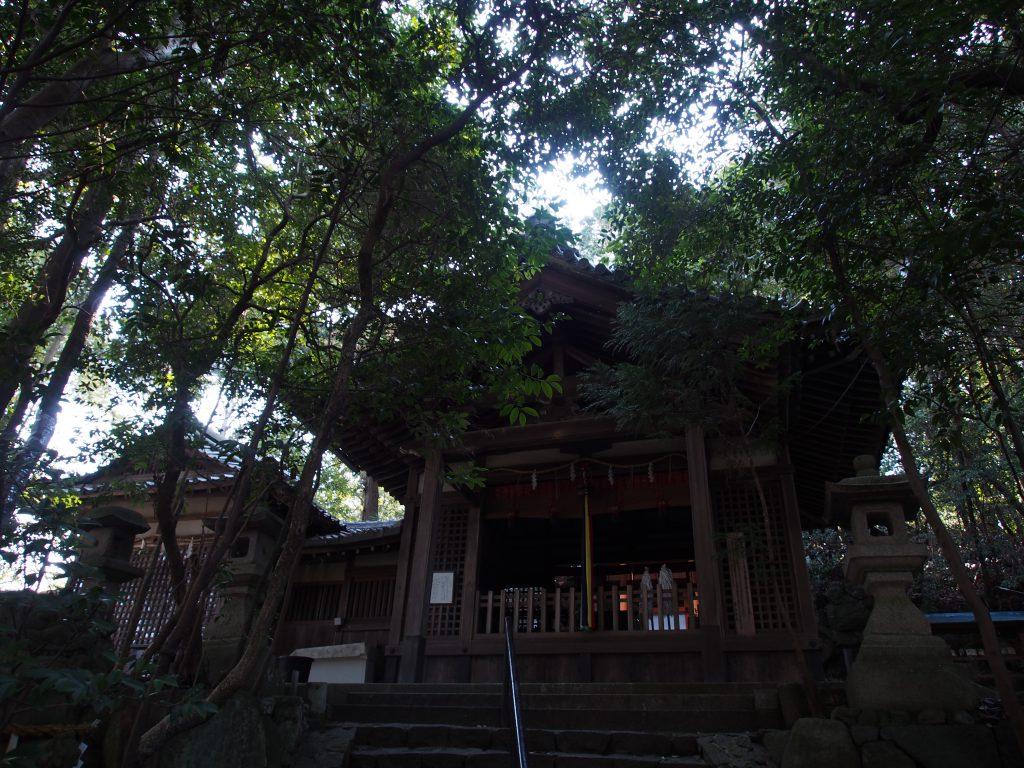 薄暗い常陸神社の社殿