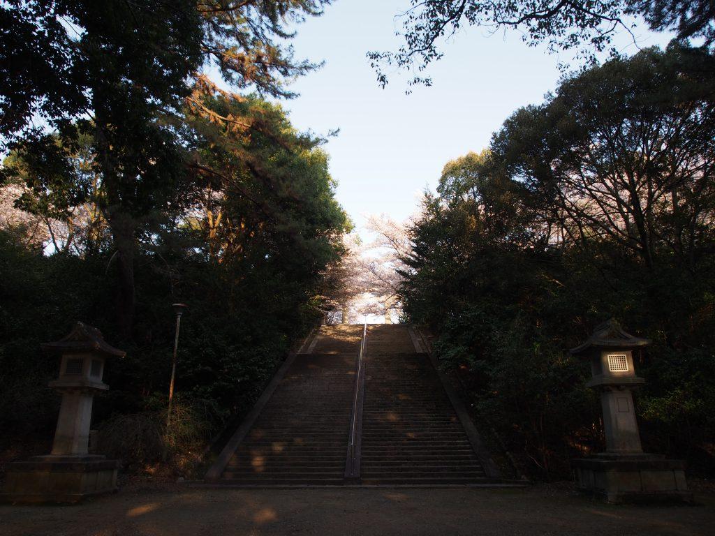 奈良護国神社境内の長い石段