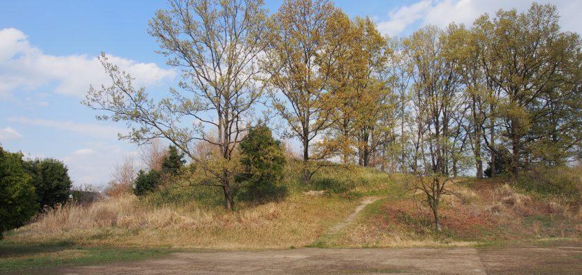 【大安寺杉山古墳】歴史ある集落の中央に位置する古墳は自由に登ることが可能
