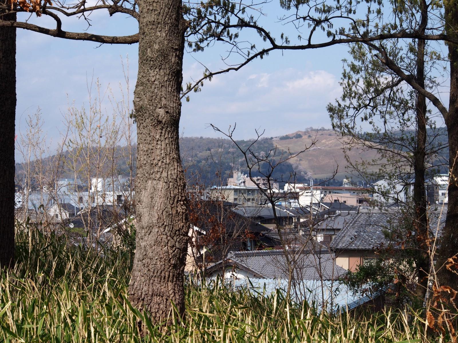大安寺杉山古墳から奈良市街地・若草山方面を望む