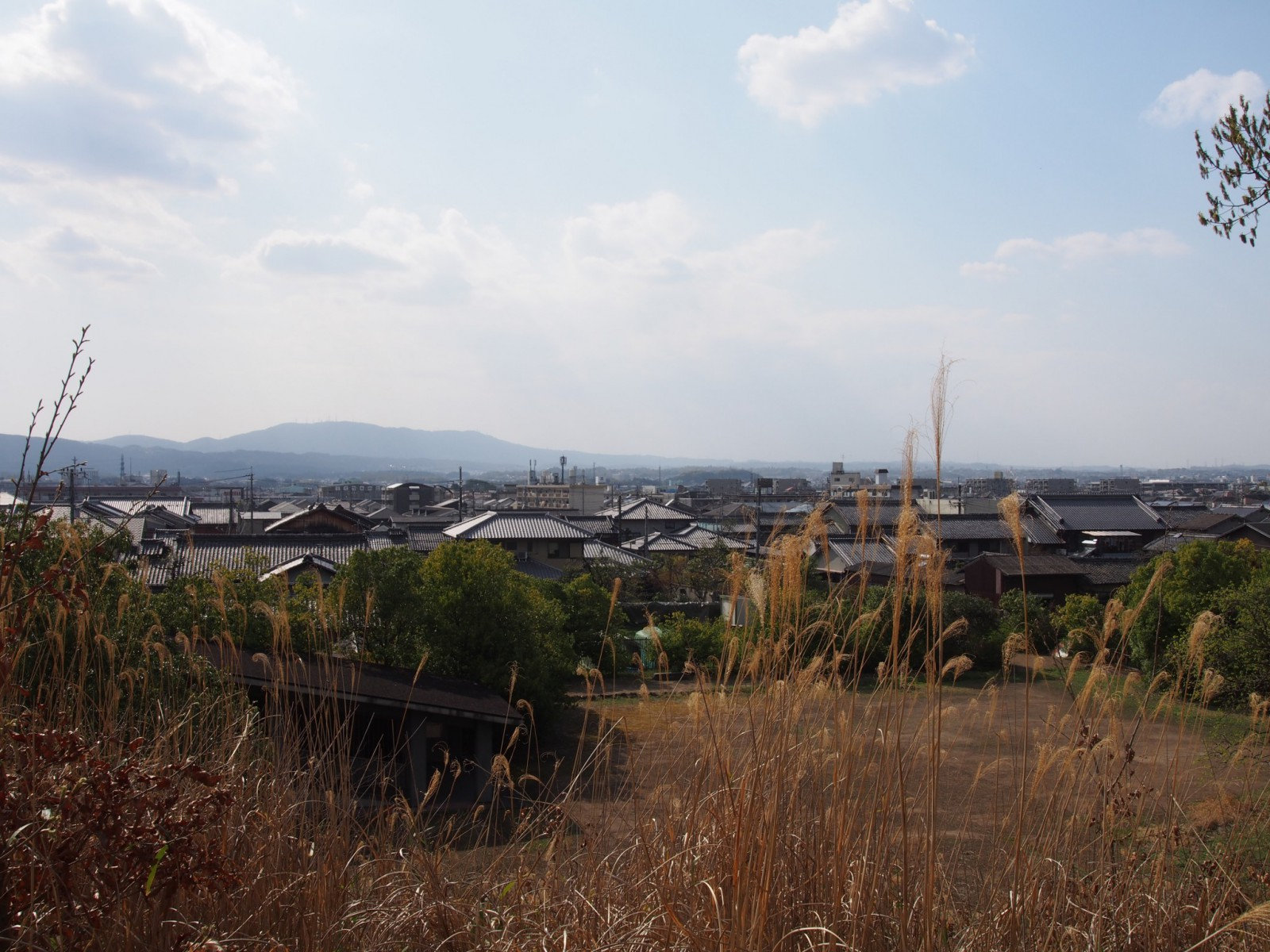 大安寺杉山古墳から生駒山方面を望む