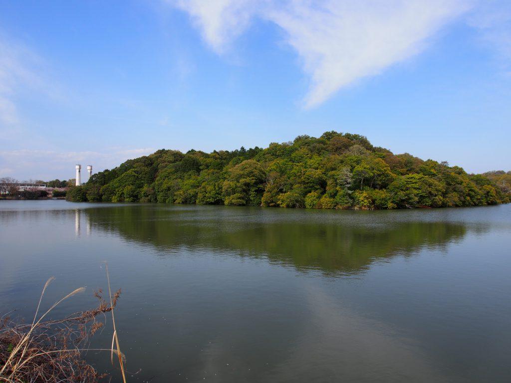 【ウワナベ古墳】日本有数の規模を誇る古墳周辺は美しい水辺が広がる