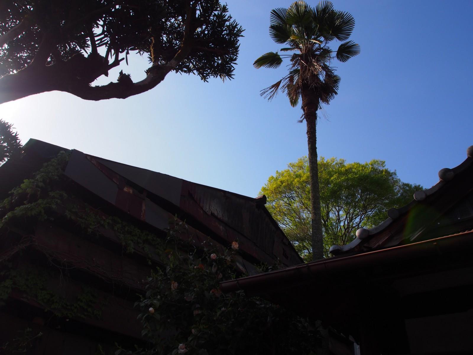 現代アートイベントでも使用された「染物工場」の倉庫跡(奈良町)