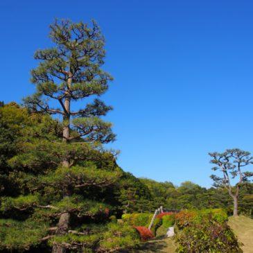 【成務天皇陵】市街地のすぐそばとは思えない美しい自然が特徴の御陵