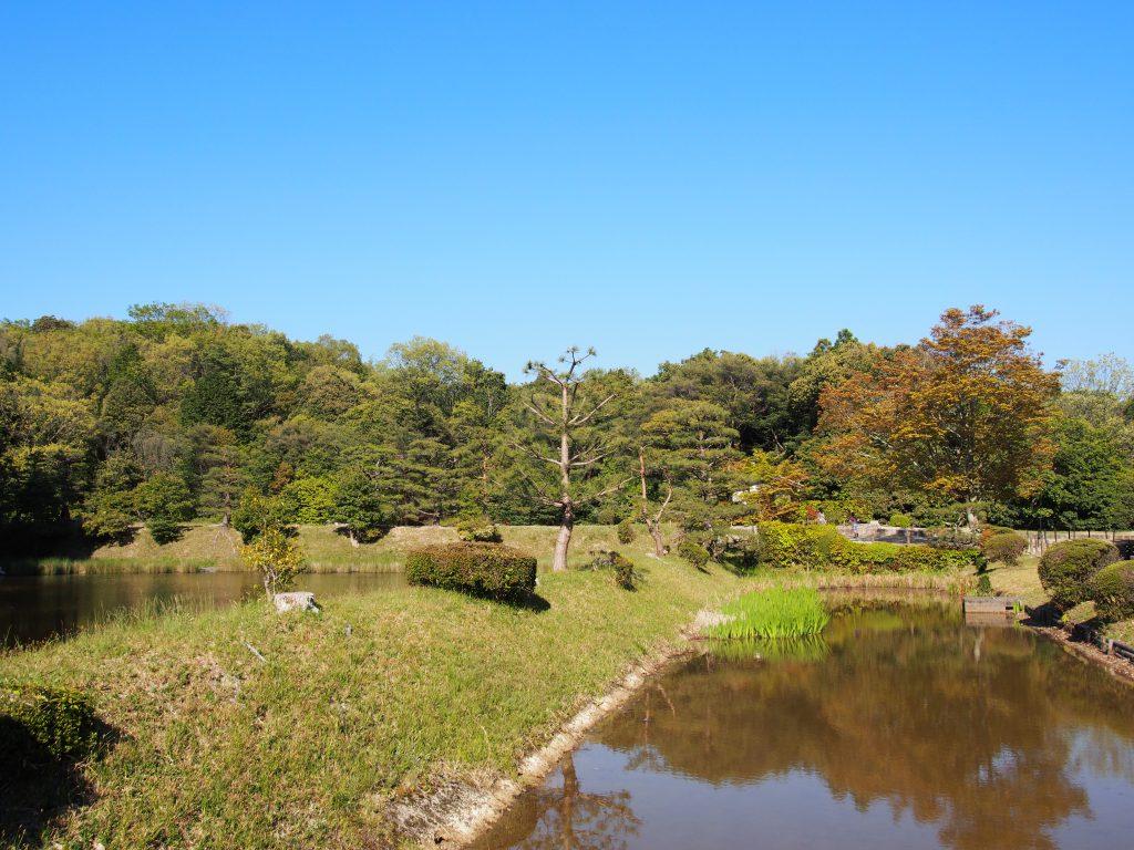水辺の風景が広がる成務天皇陵周辺