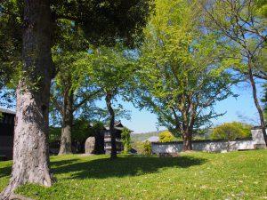 【東大寺】イチョウや桜が美しい「東大寺西大門跡」ってどんなところ?【二条大路】