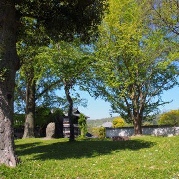 【東大寺西大門跡】かつての巨大な門の跡は「イチョウ」や「桜」が美しい憩いの空間