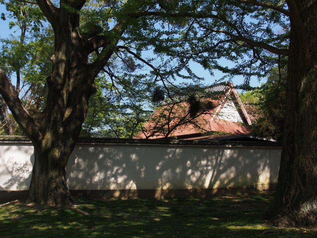 みとりい池園地・東大寺西大門跡周辺に立ち並ぶ古い家並み