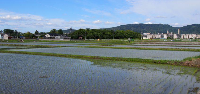 【大安寺周辺の田園風景】大安寺の拝観・歴史散策の折にのんびりと歩いてみたい空間