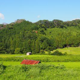 廣岡(奈良市広岡町)の農村風景