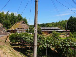 【柳生街道】ホタルでも有名な農村「大柳生の里」の美しい風景を写真でご紹介!