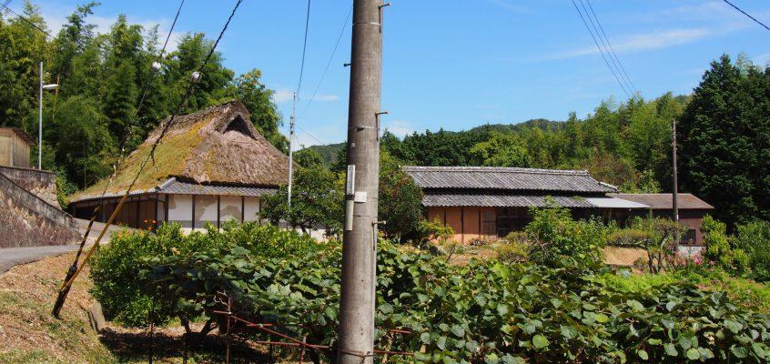【大柳生の農村風景】のどかな田園が広がる山里はホタルでも有名