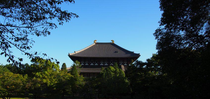 東大寺講堂跡から眺める大仏殿