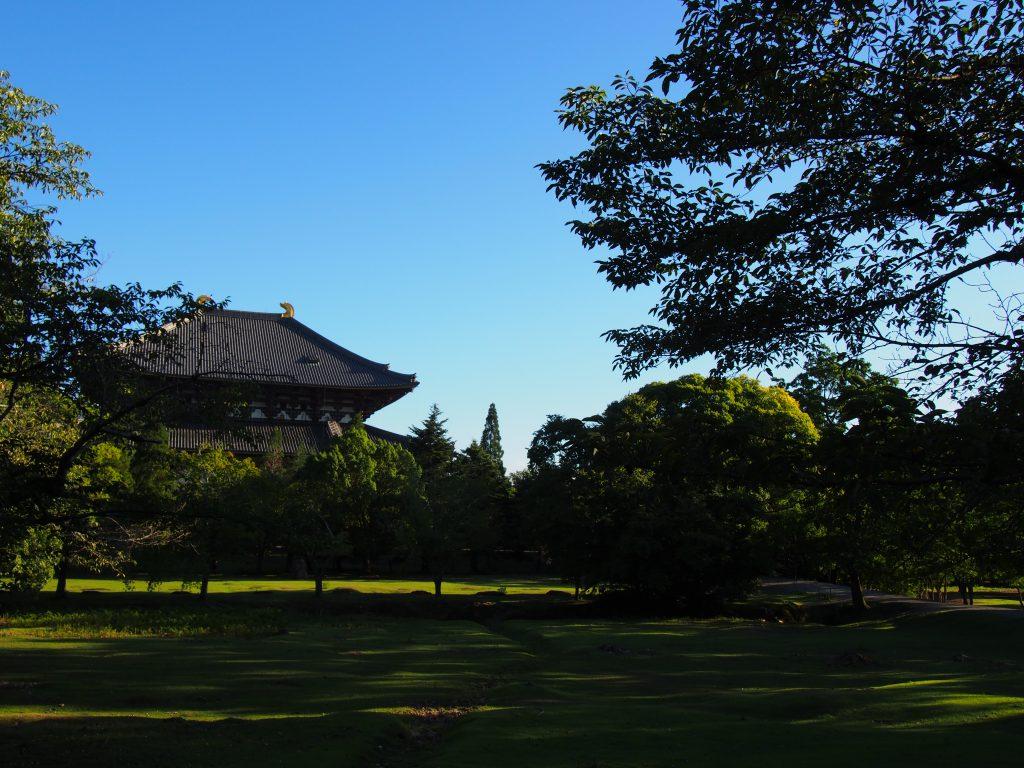 東大寺講堂跡の昼下がり