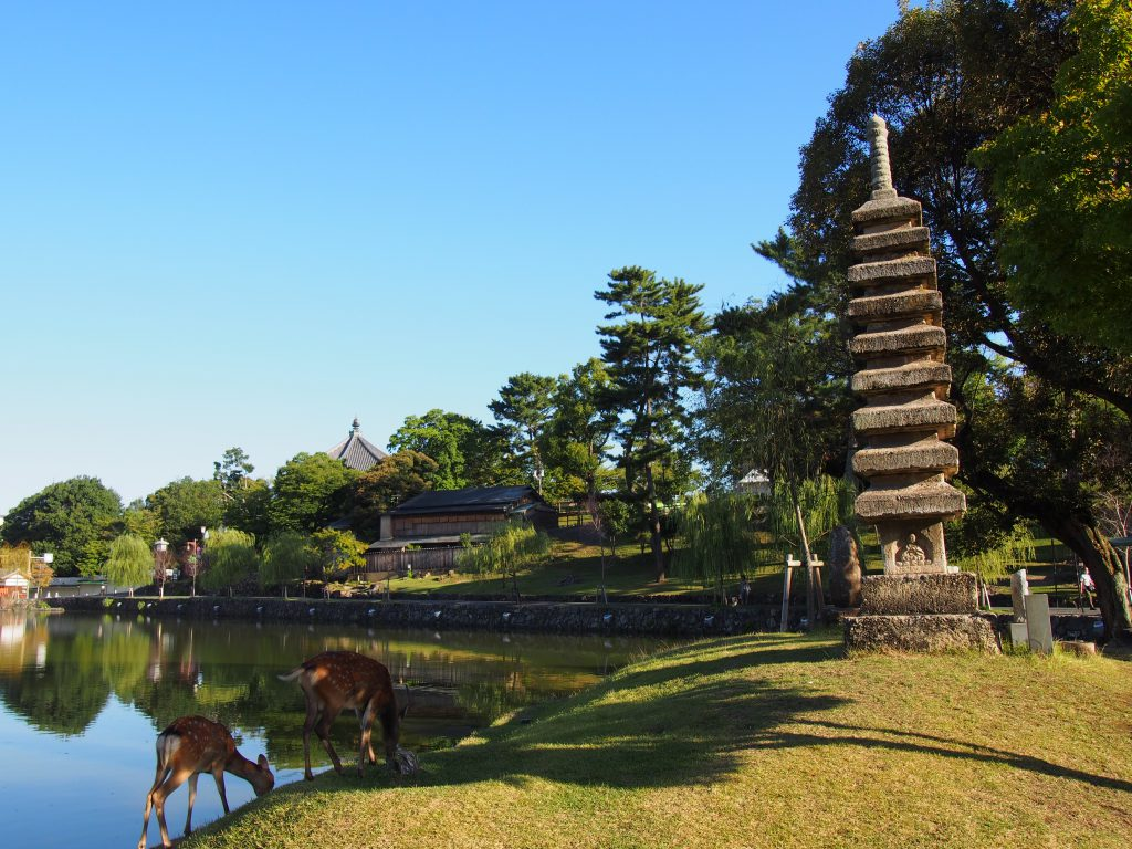 【猿沢池】奈良のまちを象徴する「水辺」は采女伝説ゆかりの地