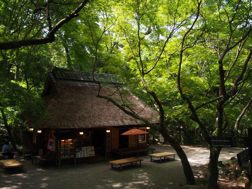 【水谷茶屋】紅葉や新緑が美しい奈良公園を代表する写真撮影スポット