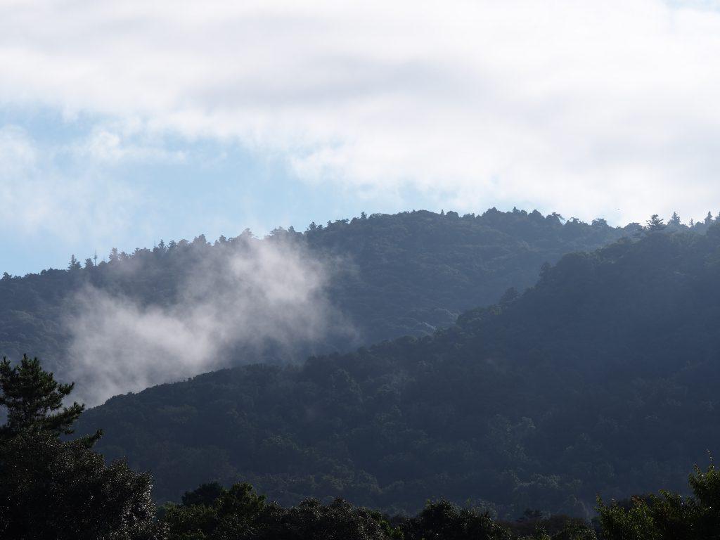 早朝の御蓋山