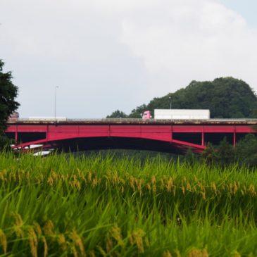 【米谷町の農村風景】物流の大動脈である「名阪国道」に囲まれる秘境