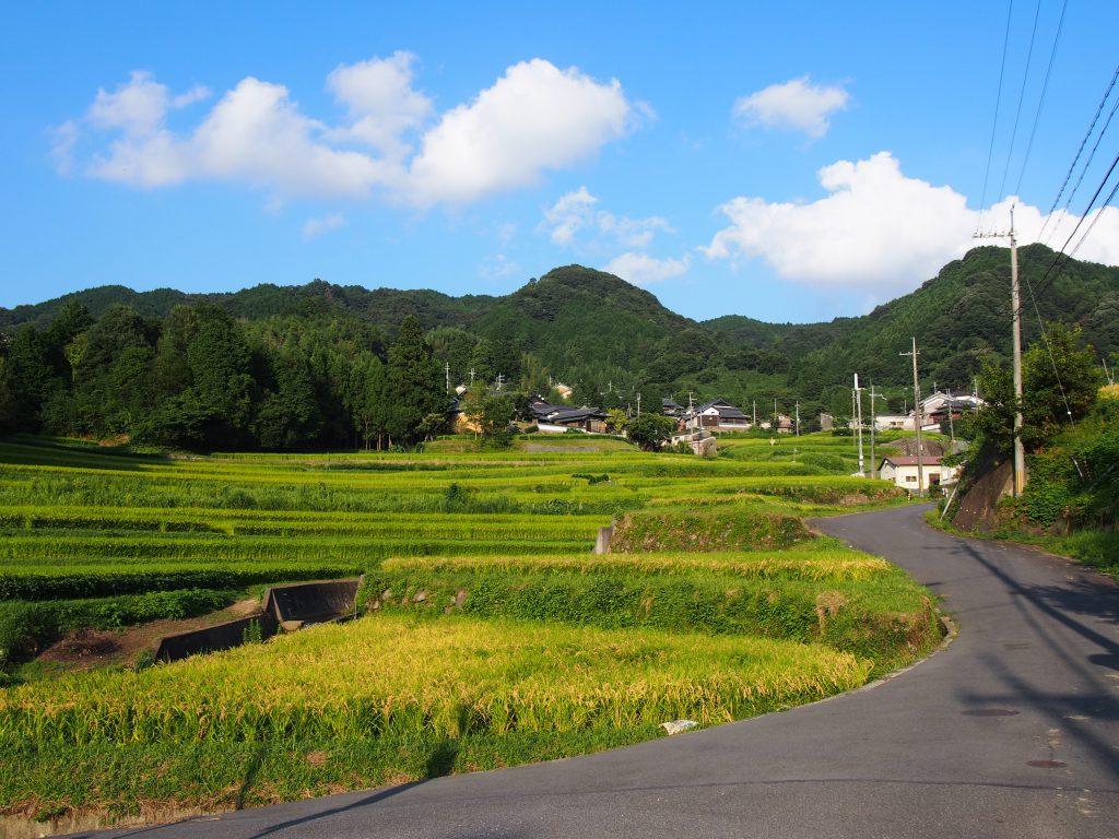 名阪国道オメガカーブの内側に広がる田園風景