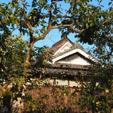 【高樋の里(弘仁寺周辺)】奈良の奥深さを体感できる穏やかな農村集落