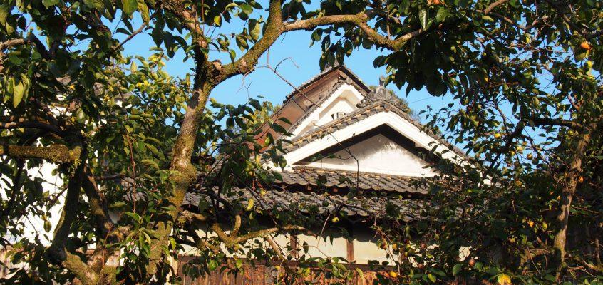 【山辺の道】奈良の奥深さを体感できる農村「高樋の里(弘仁寺周辺)」ってどんなところ?【風景写真】