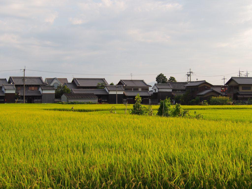 奈良・八条周辺の農村風景