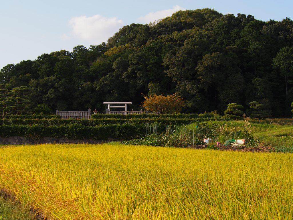 秋の垂仁天皇陵周辺