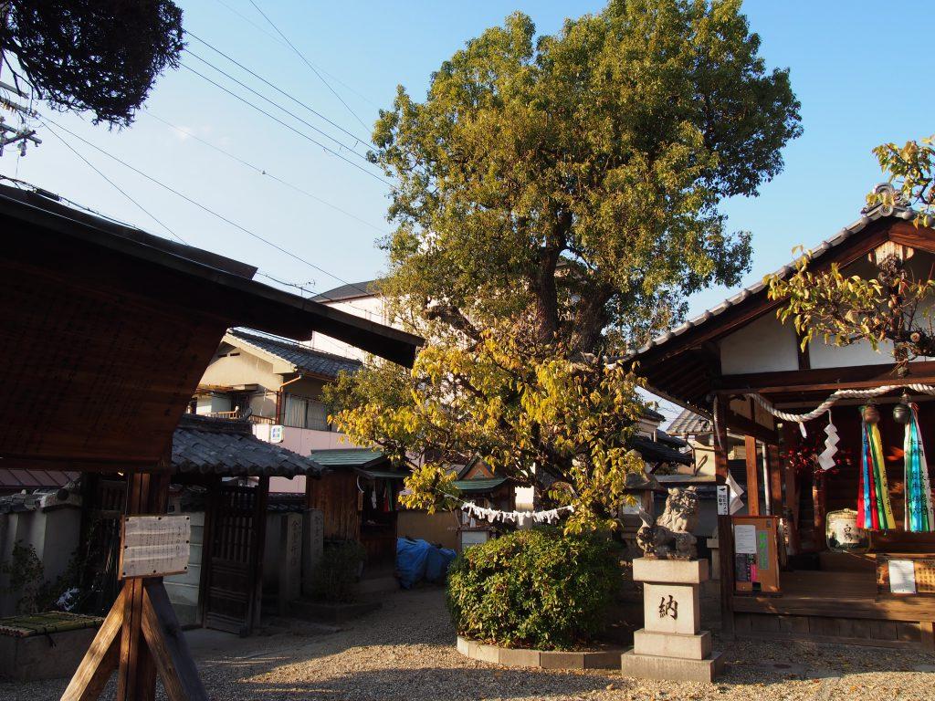 小ぶりな境内を持つ飛鳥神社(京終)