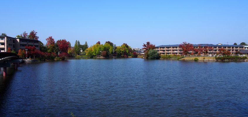 【菖蒲池(菖蒲上池)】季節折々の風景が美しい駅前すぐの「遊園地跡」