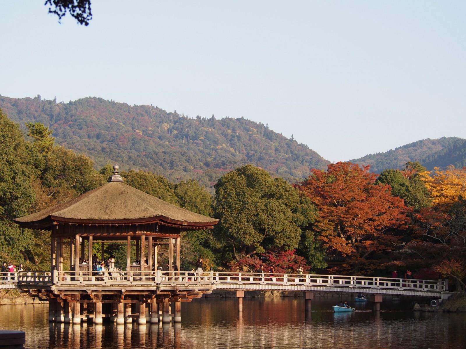秋の浮見堂と鷺池に浮かぶ貸しボート