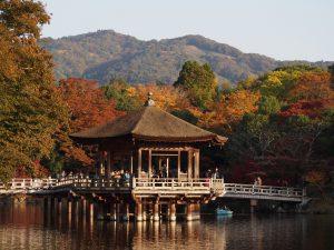 【奈良公園】いつ来ても美しい憩いの水辺「浮見堂・鷺池」ってどんなところ?みどころを写真でご紹介!