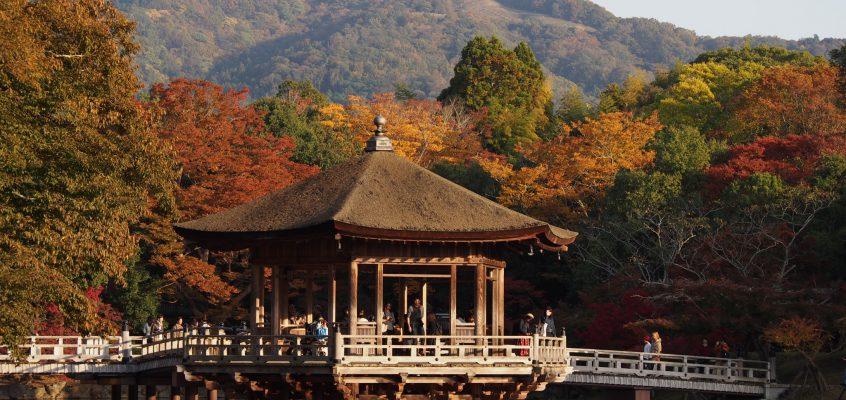 【浮見堂・鷺池】「季節ごとの風景」がいつ来ても美しい憩いの水辺