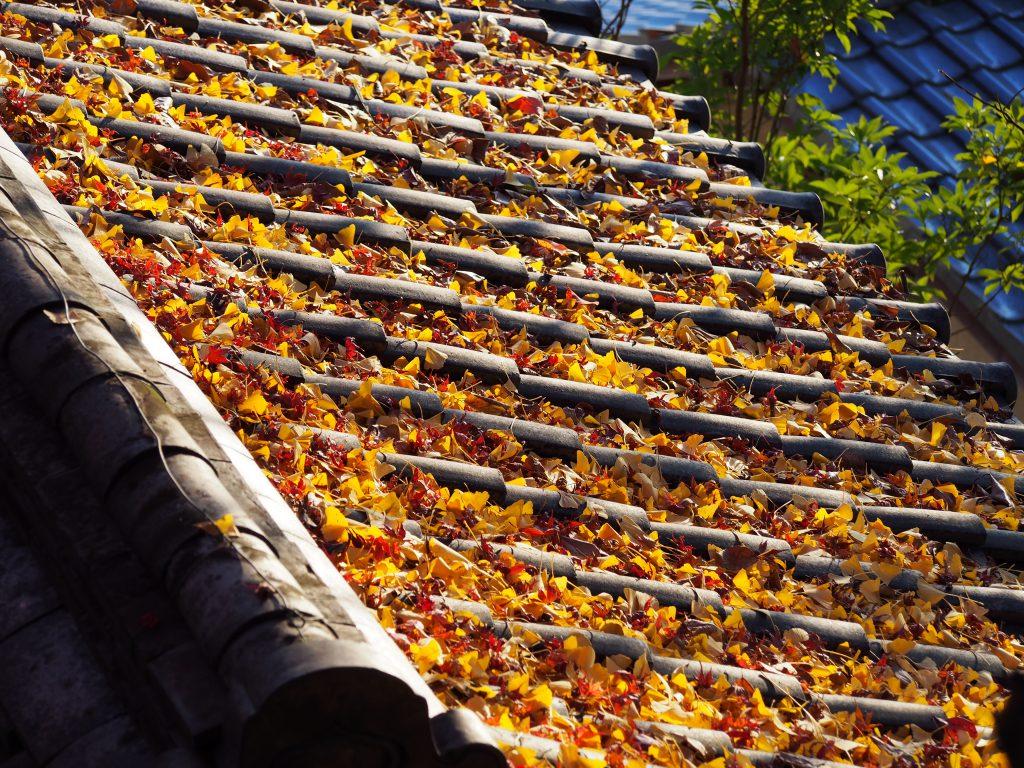 落ち葉が積もった瑜伽神社の建物