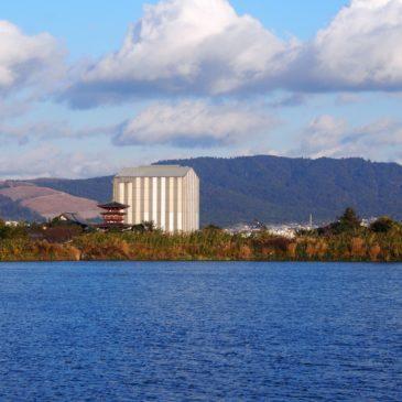 【大池】薬師寺や若草山方面を眺める美しい風景が広がる有名な撮影スポット