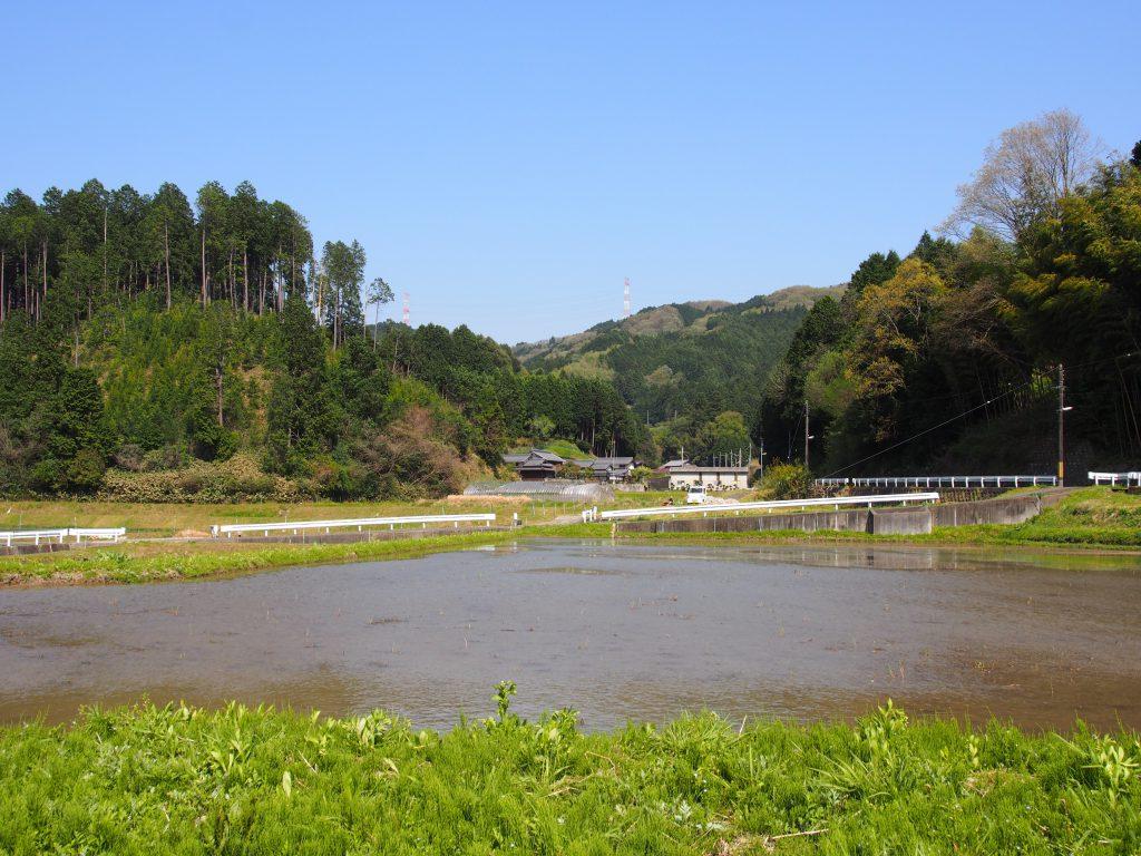 光仁天皇陵参道から眺める田園風景