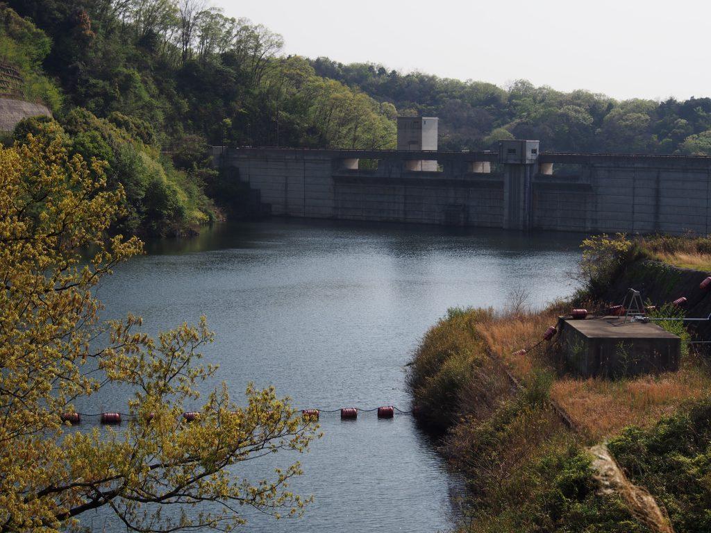 岩井川ダムのダム湖を望む