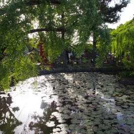 氷室神社「鏡池」