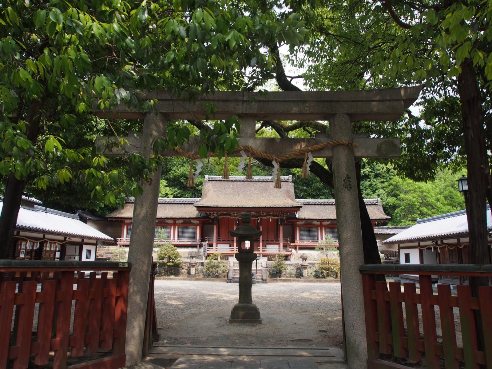 休ヶ岡八幡宮の鳥居