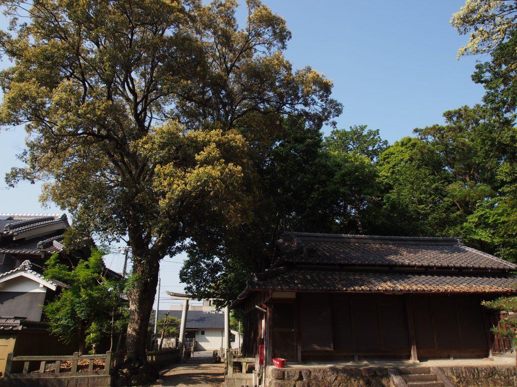 八坂神社(山町)境内地