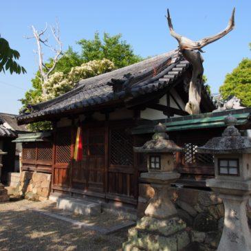 【八坂神社(柴屋町)】境内では枯死した木が独特の雰囲気を放つ