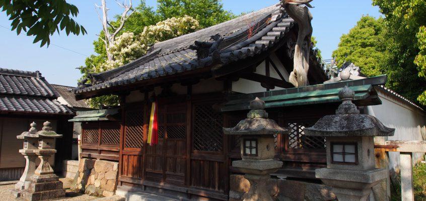 【八坂神社(柴屋町)】―境内では枯死した木が独特の雰囲気を放つ