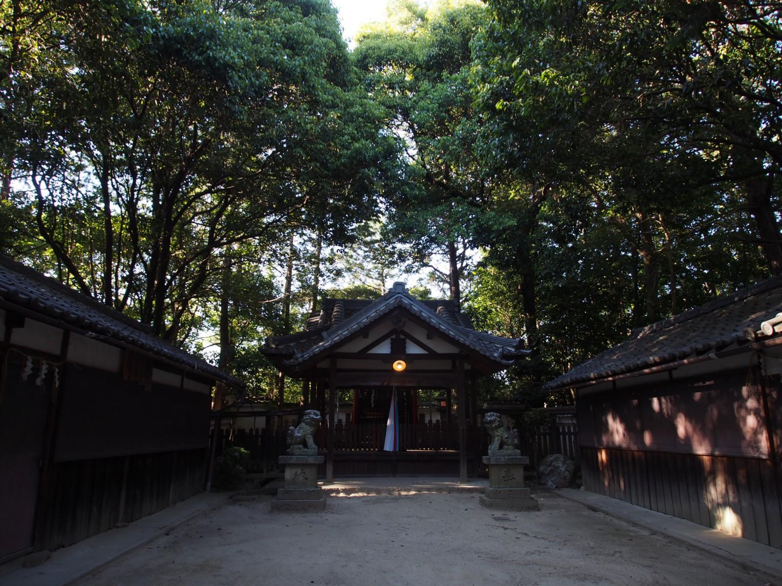 昼間でも非常に薄暗い空間である「佐紀神社(亀畑)」