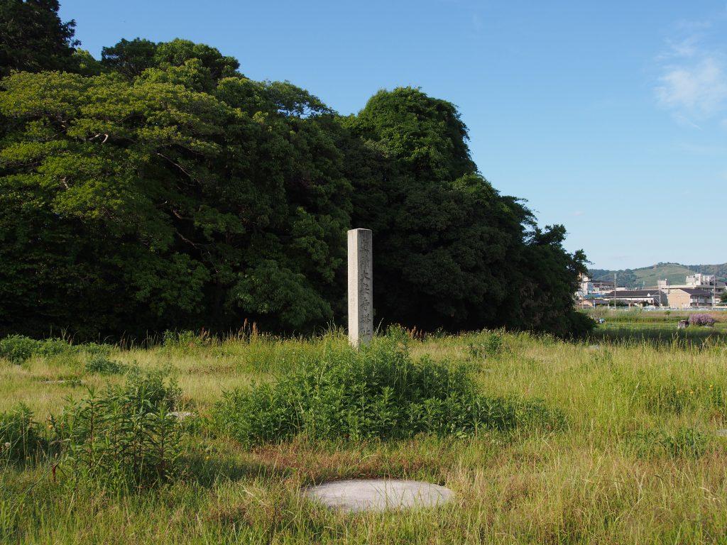 【大安寺】70m以上の塔が2つあった「大安寺塔跡」ってどんなところ?歴史などを詳しくご案内!