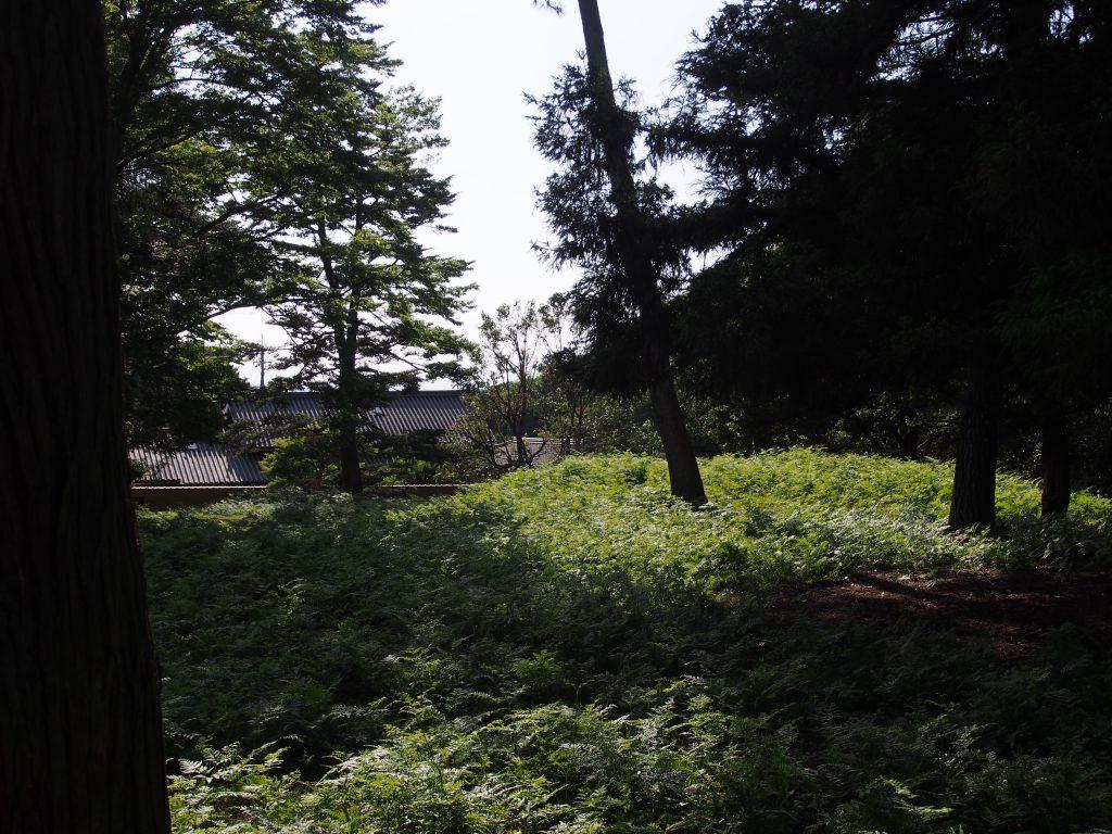 【一乗院宮墓地・東大寺西塔跡】世界的観光地の真横に広がる圧倒的な「静寂」