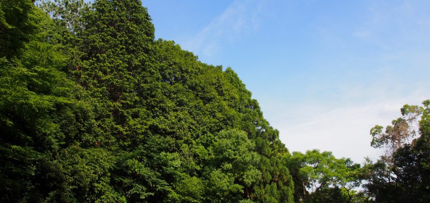 【一乗院宮墓地】東大寺大仏殿の近くにある皇族の墓地