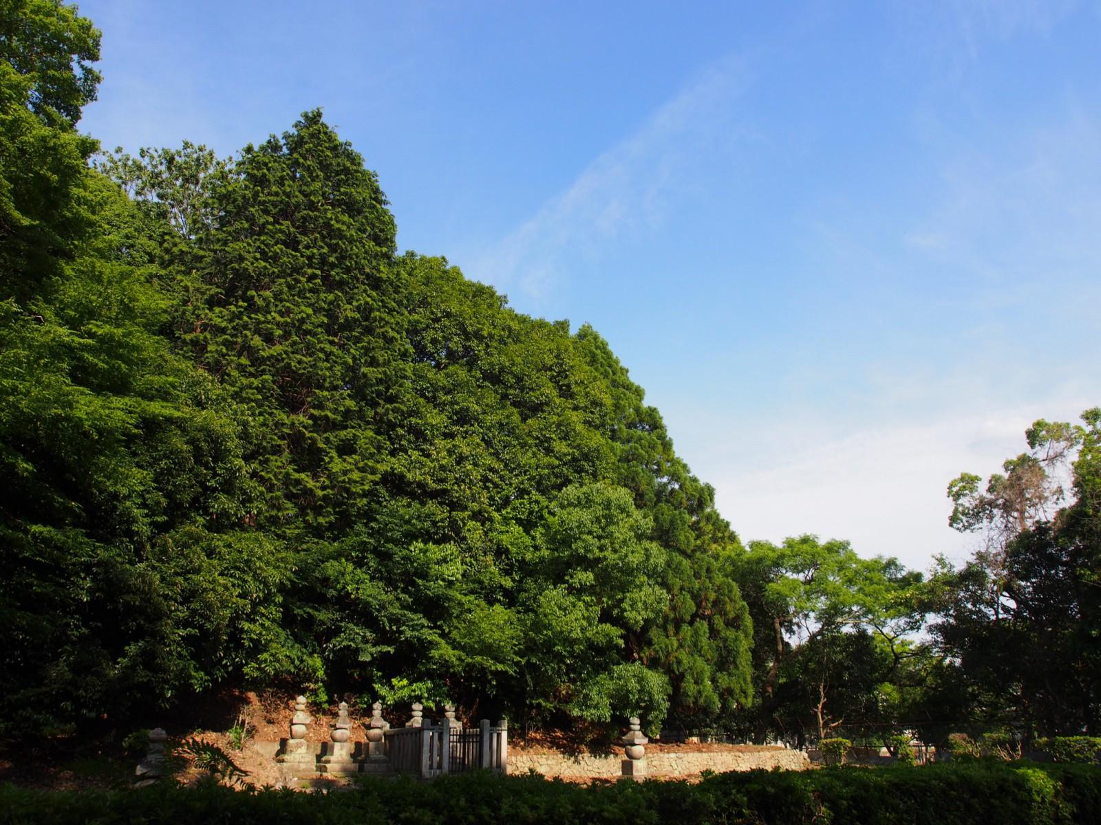 一乗院宮墓地