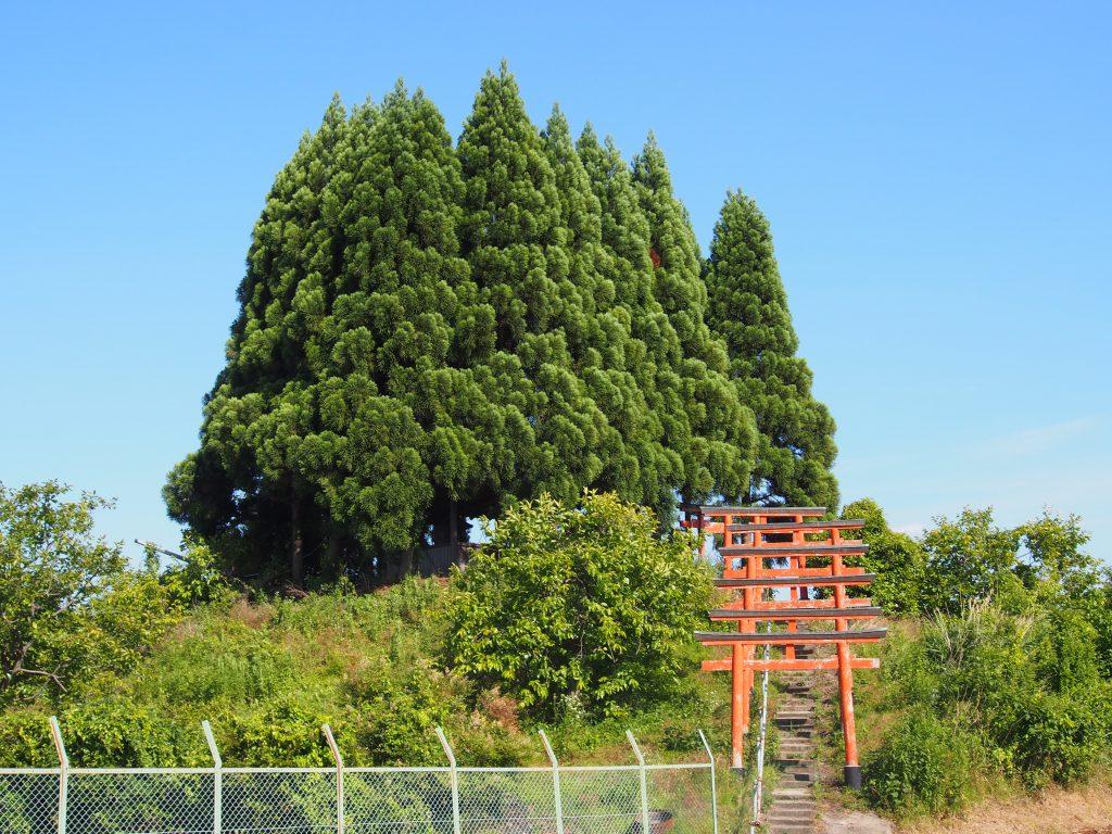【山辺の道】古墳の上に神社がある「ベンショ塚古墳・森常稲荷神社」ってどんなところ?【田園風景】